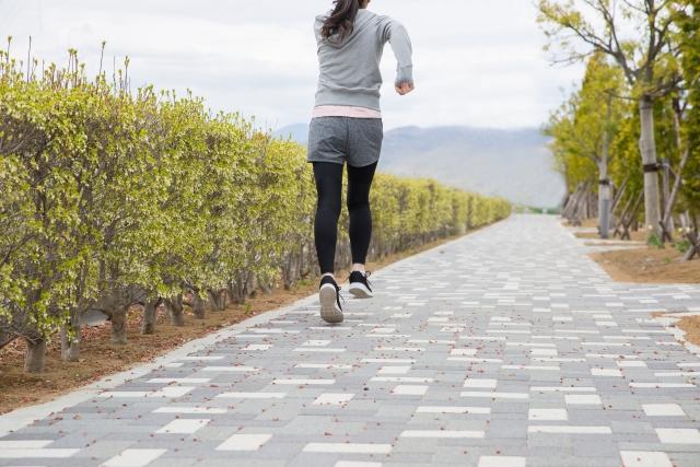 運動歩くダイエット